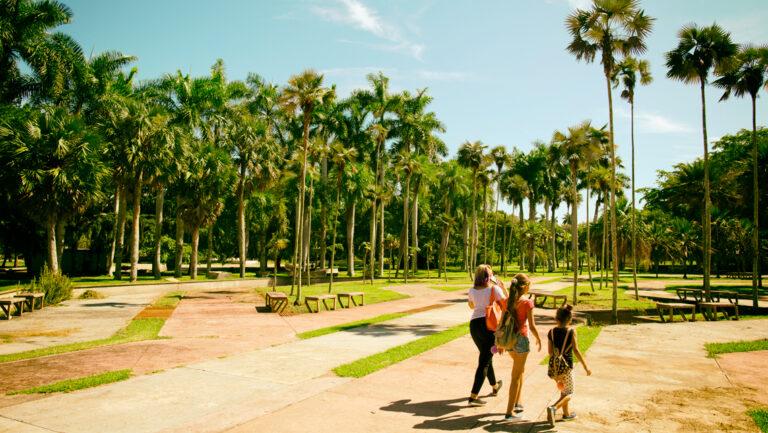 Jardín Botánico Nacional: para los amantes de la naturaleza